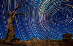 Photographer endures 15-hour shoots in the wintry Australian outback to snare stunning images of star trails in the night sky