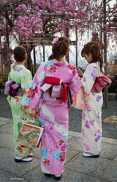Kimonos, cherry blossom season, Kyoto, Japan