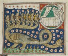 Colorful dragon creature illustration