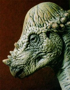 Pachycephalosaurus ---sculpture. Cousins with the Micropachychephalosaurus. Fun fact: the Micropachycephalosaurus has the longest name of the dinosaurs! -vivian