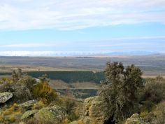 Looking over the Alexandra Basin towards the Maniototo region. http://www.centralotagonz.com/alexandra-and-clyde-area