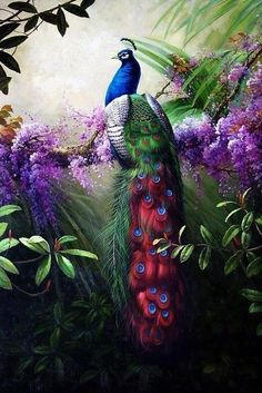 "Canvas Print Animals Peacock Oil painting Picture Printed on canvas 16""X24"" P001 in Art, Art from Dealers & Resellers, Paintings 