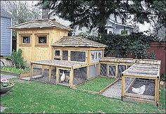 Now that is a chicken run!