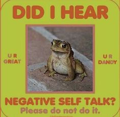 Stupid Memes, Funny Memes, Funniest Memes, Frog Pictures, Cute Frogs, Negative Self Talk, Frog And Toad, Frog Frog, Oui Oui
