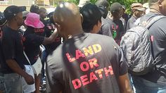 """The Black First Land First (BLF) will forcefully take land in South Africa as Zimbabwean President Robert Mugabe did, the movement's leader, Andile Mngxitama, said on Thursday. """"Land doesn't come through voting. Those who say vote for us and we will give you your land are lying to you. If you want land, you take"""
