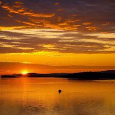 #Regram post to @pinterest Рассвет на острове Ольхон. #Байкал #Ольхон #пейзаж #фотограф #природа #рассвет  #солнце #sunrise #photograph by embraceofwind - #ViralInNature is named by Clutch.co as Canadas Top Social Media Marketing Agency http://vnat.ca/TopSocialMediaAgencyCanada2016 Visit us at http://bit.ly/1seeN6z