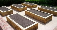 Raise beds constructed of beams