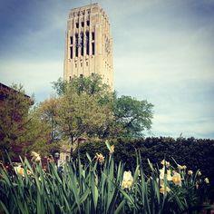 Beautiful spring day in AA!