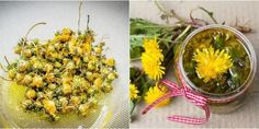 Dandelion oil is unbelievably easy to make and can be used in so many different ways. It heals pain and sore muscles, moisturizes dry skin and so much more. Holistic Remedies, Natural Home Remedies, Natural Healing, Natural Skin, Natural Beauty, Dandelion Plant, Dandelion Flower, Les Muscles Endoloris, Sore Muscles