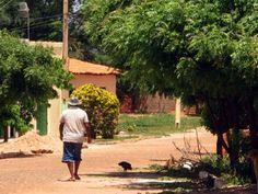 7,2 milhões de pessoas ainda passam fome no Brasil