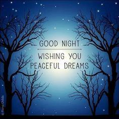 113 Best Good Night Images Nighty Night Good Evening Wishes Good