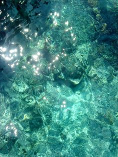 sunlight through water makes some beautiful, interesting hues of teal. looks like gemstones :)