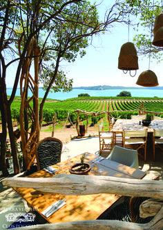 Photographie au coeur des vignes. Restaurant éphémère gastronomique