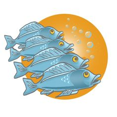 Farmed fish – a healthy and sustainable choice? (EUFIC)