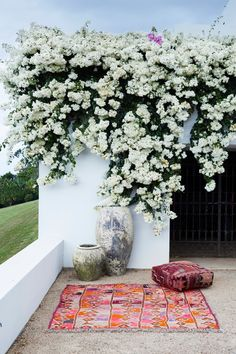 White bougainvillea blooms pair perfectly with colorful kilim textiles for a bohemian outdoor picnic locale Garden Concept Outdoor Rooms, Outdoor Gardens, Outdoor Patios, Outdoor Seating, Outdoor Living, Rue Verte, White Gardens, Dream Garden, Garden Inspiration