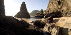 Devil's Elbow and Heceta Head State Park is quite the place. It is a picturesque location. There are tall rocks that jut out of the sand. Going To California, Construction Business, State Parks, Devil, Oregon, Country, Beach, Places, Water