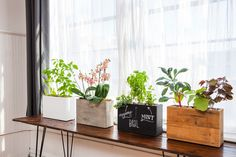 Image of: Modern Window Sill Planter