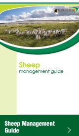 Mole Valley Farmers Sheep Management Guide