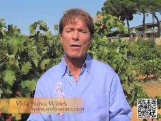 Cliff Richard - Vida Nova @ Wells Wines September 20, 2012 - YouTube