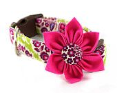 girly dog collar from etsy