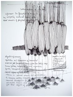 artchipel:    Kevin Townsend   7knotwind & wrk-kevintownsend - Objects of memory (drawing). Ink on paper (2010)