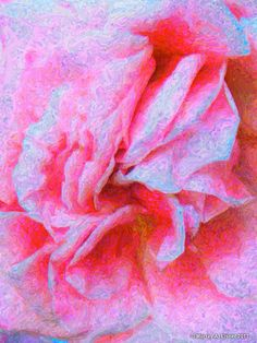 PINK ROSE  Large 26 x 20 CANVAS  Abstract by Murray Eisner on Etsy, $70.00