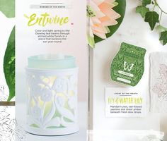 Entwine and Water & Lily - Scentsy April 2017 Scent and Warmer of the Month