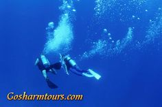 Diving is excluded: Entrance fees for Ras Mohamed, Lunch, Beverages. All diving courses excl. certification manuals  http://gosharmtours.com