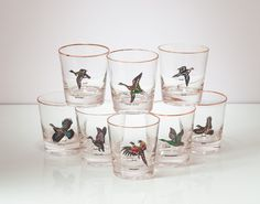 Vintage Rock Glass Set Wild Fowl Game Birds Hunting Lowball Glasses Barware Set of Eight on Etsy, $42.00