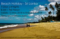 Sri Lanka tour packages are completely topped off with bliss, joy, undertakings, and love. Sri Lanka tour packages can be profited at all financial plan, Terms And Conditions, Beach Holiday, Beach Fun, Day Tours, Holiday Destinations, Sri Lanka, Palm Trees, Seaside, Calendar