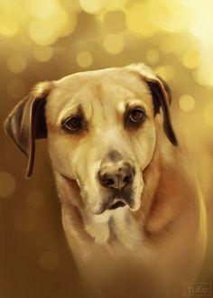 Chinook Dog Portrait (commission artwork) by Yu-koi.deviantart.com on @DeviantArt