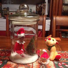 24th December 2014 - Jingles has created his own  snow globe. #elfontheshelf #aussieelfontheshelf