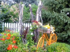 Orange Bicycle ,