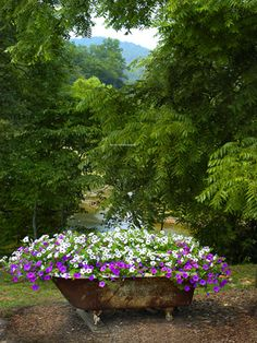 flower containers, garden planters, clawfoot tubs, wave, flower beds