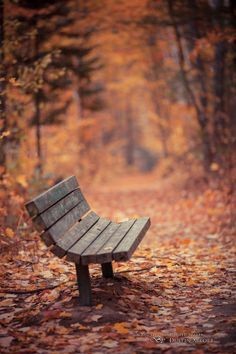 Have a Seat by Dustin Abbott, via 500px