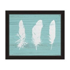White Feathers on Wood' Blue/White Canvas Framed Graphic Wall Art