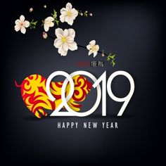 Happy New Year 2019 Feliz Ano Novo