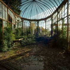 """""""A magnificent greenhouse, fallen into disrepair. Photo by @mgness."""""""