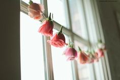 a garland of roses in the window