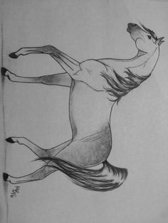 Newest drawing of an Arabian. Drew this because we couldn't go the Arabian horse show in Scottsdale this year. Feel free to comment. Art by McKenna B