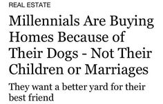 Damn those millennials! - Album on Imgur