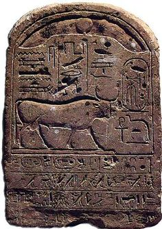 """Cette stèle rappelle la donation de terrain effectuée par le pharaon Thoutmosis III au profit du dieu taureau Mnévis. Soixante lopins de terre destinées aux pâturages des troupeaux de Mnévis sont confiés à la gestion du surintendant du Trésor Bénermérout. Une inscription sur la stèle montre la liaison étroite entre le taureau et le dieu solaire d'Héliopolis : """"messager de Rê et vrai compagnon de route d'Atoum"""". Mnésis serait donc une manifestation du soleil, à son coucher."""