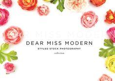 Floral 1 by DEAR MISS MODERN on @creativemarket
