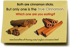 Ceylon Cinnamon Versus Cassia Cinnamon ~ One of these things is not like the other.and doesn't contain the health benefits either! Real Cinnamon, Cassia Cinnamon, Ceylon Cinnamon, Honey And Cinnamon, Cinnamon Sticks, Cinnamon Recipes, Cinnamon Health Benefits, Honey Benefits, Health