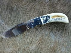 Hunting pocket knife mounted with Warthog tusks handle by Bazal Shanahan and scrimshaw by Alfred Dube.