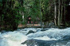 Saussbachklamm bei Waldkirchen im Bayerischen Wald Deutschland