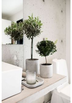 Bathroom Decor green bathroom with plants, green decoration for the bathroom in a concrete pot *** grne Badezimmerpflanzen in Betonvasen / Betontopf, Badezimmerdekoration aus Beton und grnen Pflanzen Small Plants, Green Plants, Indoor Plants, Fake Plants, Concrete Pots, Concrete Bathroom, Concrete Floor, Concrete Wall, Scandinavian Interior Design