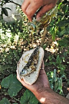 Nothing better than Portuguese style grilled sardines & Portuguese bread