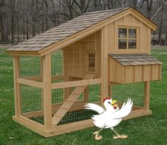 What you need to know if you want to build a chicken hutch.