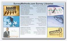 Survey Libraries